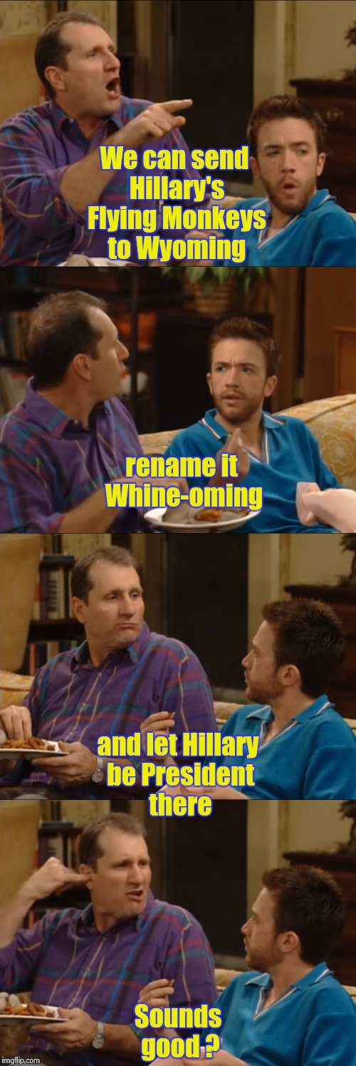 The wisdom of Al Bundy saves the day | We can send Hillary's Flying Monkeys to Wyoming Sounds good ? and let Hillary be President there rename it Whine-oming | image tagged in al bundy q-tip,libtards,put it somewhere else patrick | made w/ Imgflip meme maker