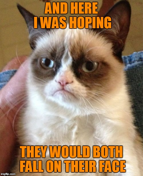 Grumpy Cat Meme | AND HERE I WAS HOPING THEY WOULD BOTH FALL ON THEIR FACE | image tagged in memes,grumpy cat | made w/ Imgflip meme maker