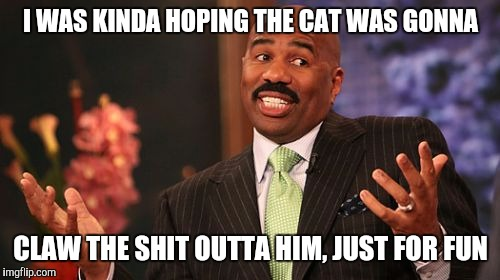 Steve Harvey Meme | I WAS KINDA HOPING THE CAT WAS GONNA CLAW THE SHIT OUTTA HIM, JUST FOR FUN | image tagged in memes,steve harvey | made w/ Imgflip meme maker