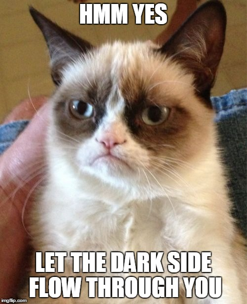 Grumpy Cat Meme | HMM YES LET THE DARK SIDE FLOW THROUGH YOU | image tagged in memes,grumpy cat | made w/ Imgflip meme maker