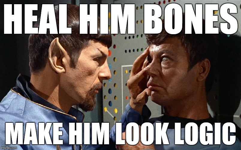 spock n bones | HEAL HIM BONES MAKE HIM LOOK LOGIC | image tagged in spock n bones | made w/ Imgflip meme maker