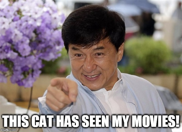 THIS CAT HAS SEEN MY MOVIES! | made w/ Imgflip meme maker