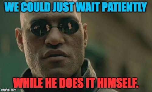 Matrix Morpheus Meme | WE COULD JUST WAIT PATIENTLY WHILE HE DOES IT HIMSELF. | image tagged in memes,matrix morpheus | made w/ Imgflip meme maker