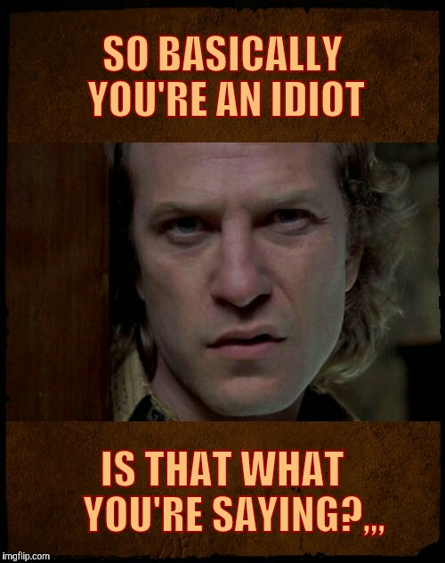 SO BASICALLY YOU'RE AN IDIOT IS THAT WHAT    YOU'RE SAYING?,,, | image tagged in buffalo bill are you serious?   | made w/ Imgflip meme maker