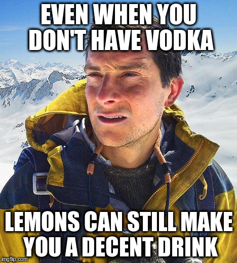 EVEN WHEN YOU DON'T HAVE VODKA LEMONS CAN STILL MAKE YOU A DECENT DRINK | made w/ Imgflip meme maker