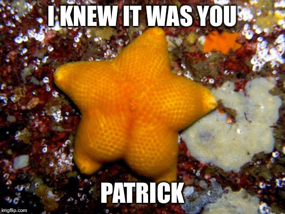 I KNEW IT WAS YOU PATRICK | made w/ Imgflip meme maker