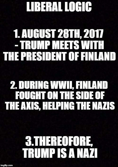 Yep | LIBERAL LOGIC 3.THEREOFORE, TRUMP IS A NAZI 1. AUGUST 28TH, 2017 - TRUMP MEETS WITH THE PRESIDENT OF FINLAND 2. DURING WWII, FINLAND FOUGHT  | image tagged in blank,trump,nazi,finland,tinfoil,liberal logic | made w/ Imgflip meme maker