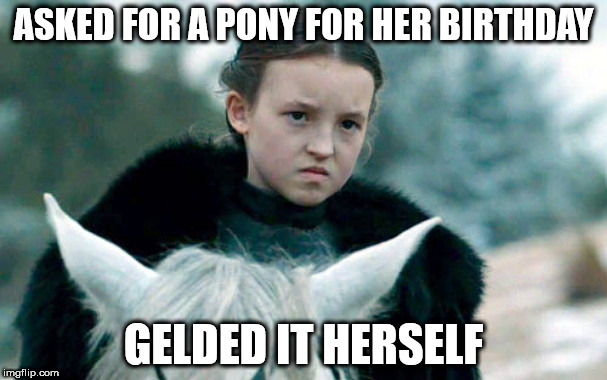ASKED FOR A PONY FOR HER BIRTHDAY GELDED IT HERSELF | image tagged in badass-by-bedtime lady lyanna mormont | made w/ Imgflip meme maker