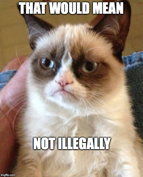 Grumpy Cat Meme | THAT WOULD MEAN NOT ILLEGALLY | image tagged in memes,grumpy cat | made w/ Imgflip meme maker