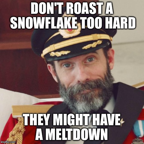 Captain Obvious | DON'T ROAST A SNOWFLAKE TOO HARD THEY MIGHT HAVE A MELTDOWN | image tagged in captain obvious | made w/ Imgflip meme maker