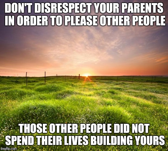 landscapemaymay | DON'T DISRESPECT YOUR PARENTS IN ORDER TO PLEASE OTHER PEOPLE THOSE OTHER PEOPLE DID NOT SPEND THEIR LIVES BUILDING YOURS | image tagged in landscapemaymay | made w/ Imgflip meme maker