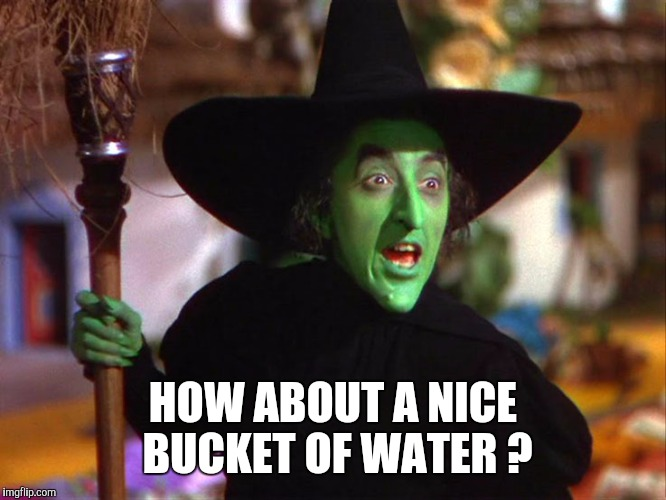 Memes | HOW ABOUT A NICE BUCKET OF WATER ? | image tagged in memes | made w/ Imgflip meme maker