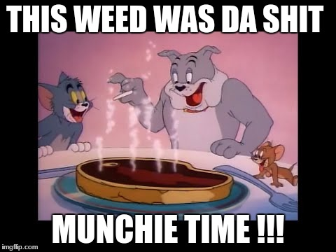 THIS WEED WAS DA SHIT MUNCHIE TIME !!! | image tagged in smoke weed everyday | made w/ Imgflip meme maker