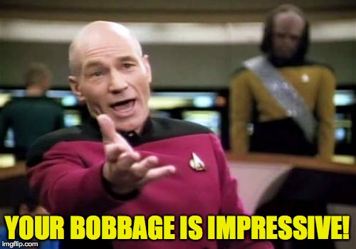 Picard Wtf Meme | YOUR BOBBAGE IS IMPRESSIVE! | image tagged in memes,picard wtf | made w/ Imgflip meme maker
