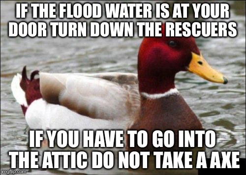 Malicious Advice Mallard Meme | IF THE FLOOD WATER IS AT YOUR DOOR TURN DOWN THE RESCUERS IF YOU HAVE TO GO INTO THE ATTIC DO NOT TAKE A AXE | image tagged in memes,malicious advice mallard | made w/ Imgflip meme maker