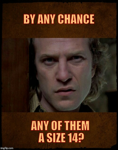 Buffalo Bill, Are you serious?,,, | BY ANY CHANCE ANY OF THEM A SIZE 14? | image tagged in buffalo bill are you serious?   | made w/ Imgflip meme maker