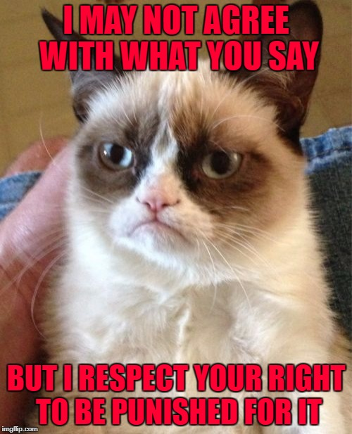 Reminds me of a few trolls I know...LOL | I MAY NOT AGREE WITH WHAT YOU SAY BUT I RESPECT YOUR RIGHT TO BE PUNISHED FOR IT | image tagged in memes,grumpy cat,trolls,freedom,funny,cats | made w/ Imgflip meme maker