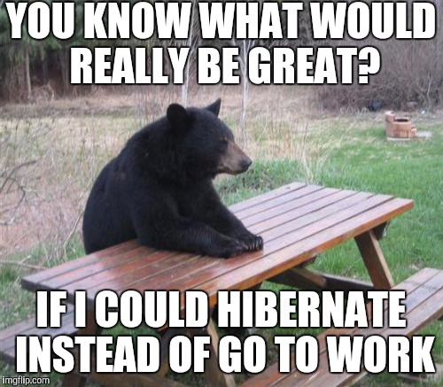 YOU KNOW WHAT WOULD REALLY BE GREAT? IF I COULD HIBERNATE INSTEAD OF GO TO WORK | made w/ Imgflip meme maker