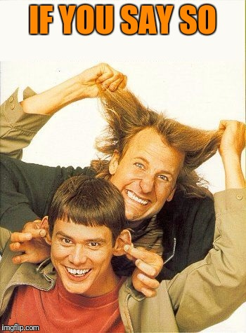 DUMB and dumber | IF YOU SAY SO | image tagged in dumb and dumber | made w/ Imgflip meme maker
