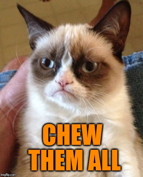 Grumpy Cat Meme | CHEW THEM ALL | image tagged in memes,grumpy cat | made w/ Imgflip meme maker