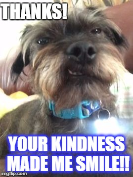 Thanks | THANKS! YOUR KINDNESS MADE ME SMILE!! | image tagged in rudy smiles,kindness,thank you,smile,cute dog,ugly dog | made w/ Imgflip meme maker