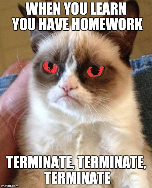Grumpy Cat Meme | WHEN YOU LEARN YOU HAVE HOMEWORK TERMINATE, TERMINATE, TERMINATE | image tagged in memes,grumpy cat | made w/ Imgflip meme maker