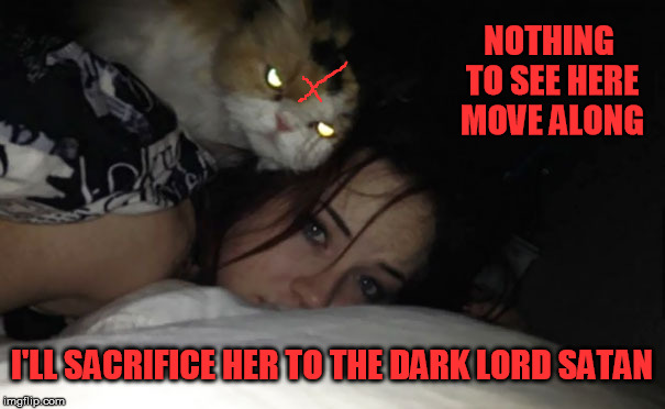 NOTHING TO SEE HERE MOVE ALONG I'LL SACRIFICE HER TO THE DARK LORD SATAN | made w/ Imgflip meme maker