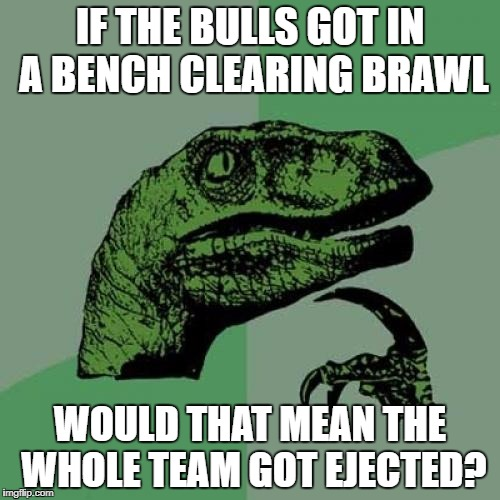 Philosoraptor Meme | IF THE BULLS GOT IN A BENCH CLEARING BRAWL WOULD THAT MEAN THE WHOLE TEAM GOT EJECTED? | image tagged in memes,philosoraptor | made w/ Imgflip meme maker