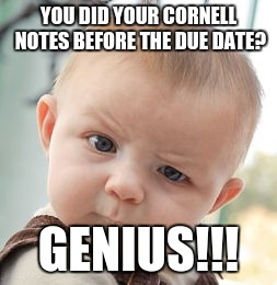 Skeptical Baby Meme | YOU DID YOUR CORNELL NOTES BEFORE THE DUE DATE? GENIUS!!! | image tagged in memes,skeptical baby | made w/ Imgflip meme maker