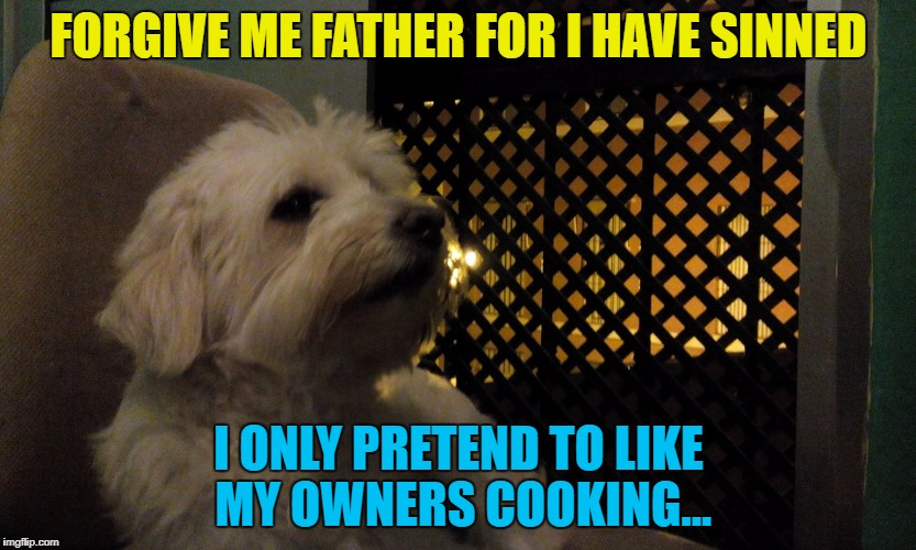 I'm guessing he's not the only one :) | FORGIVE ME FATHER FOR I HAVE SINNED I ONLY PRETEND TO LIKE MY OWNERS COOKING... | image tagged in julio,memes,animals,dogs,religion,confession | made w/ Imgflip meme maker