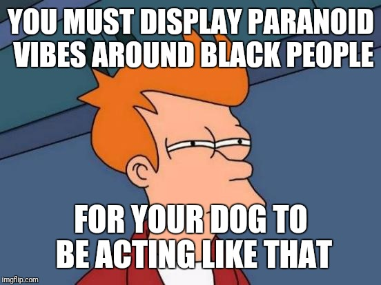Futurama Fry Meme | YOU MUST DISPLAY PARANOID VIBES AROUND BLACK PEOPLE FOR YOUR DOG TO BE ACTING LIKE THAT | image tagged in memes,futurama fry | made w/ Imgflip meme maker
