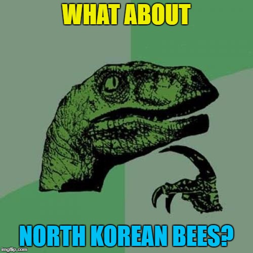 Philosoraptor Meme | WHAT ABOUT NORTH KOREAN BEES? | image tagged in memes,philosoraptor | made w/ Imgflip meme maker