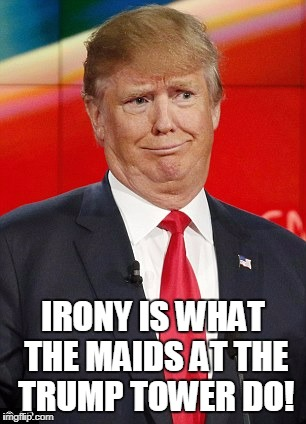 IRONY IS WHAT THE MAIDS AT THE TRUMP TOWER DO! | made w/ Imgflip meme maker