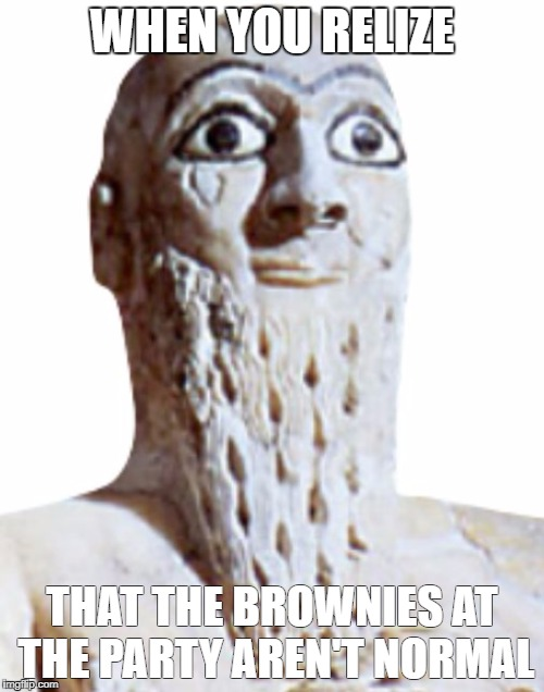 those darn brownies | WHEN YOU RELIZE THAT THE BROWNIES AT THE PARTY AREN'T NORMAL | image tagged in when you realize,memes | made w/ Imgflip meme maker