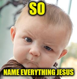 Skeptical Baby Meme | SO NAME EVERYTHING JESUS | image tagged in memes,skeptical baby | made w/ Imgflip meme maker