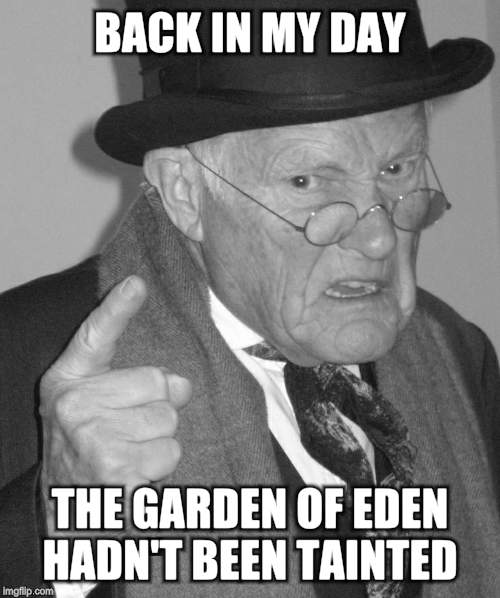 Back in my day | BACK IN MY DAY THE GARDEN OF EDEN HADN'T BEEN TAINTED | image tagged in back in my day | made w/ Imgflip meme maker