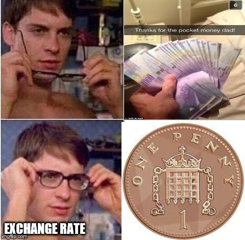 (I think it's euros) This is why I'm a brexiteer | EXCHANGE RATE | image tagged in peter parker glasses,memes,rich kids,snapchat,buggyleroast,inflation | made w/ Imgflip meme maker