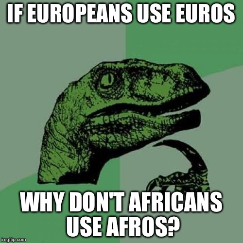 Philosoraptor Meme | IF EUROPEANS USE EUROS WHY DON'T AFRICANS USE AFROS? | image tagged in memes,philosoraptor | made w/ Imgflip meme maker