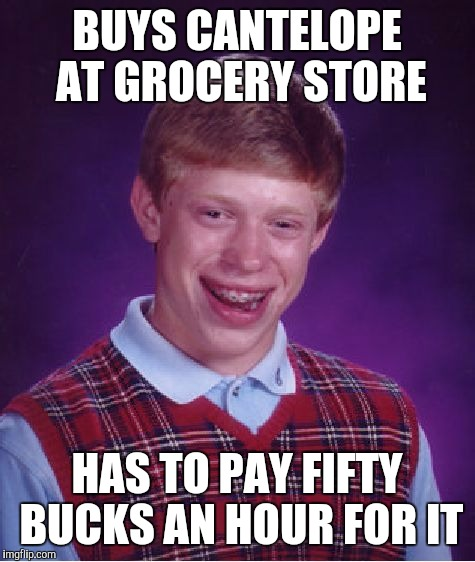 Bad Luck Brian Meme | BUYS CANTELOPE AT GROCERY STORE HAS TO PAY FIFTY BUCKS AN HOUR FOR IT | image tagged in memes,bad luck brian | made w/ Imgflip meme maker