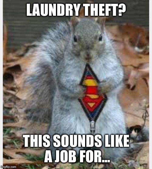 LAUNDRY THEFT? THIS SOUNDS LIKE A JOB FOR... | made w/ Imgflip meme maker
