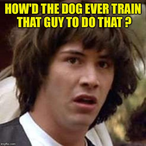 Conspiracy Keanu Meme | HOW'D THE DOG EVER TRAIN THAT GUY TO DO THAT ? | image tagged in memes,conspiracy keanu | made w/ Imgflip meme maker