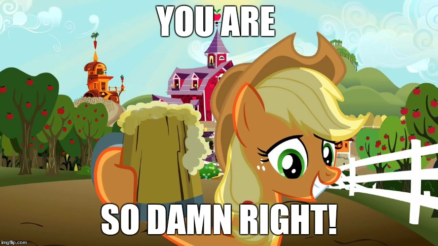 Applejack and her cider | YOU ARE SO DAMN RIGHT! | image tagged in applejack and her cider | made w/ Imgflip meme maker