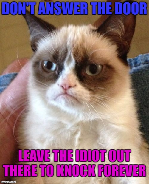 Grumpy Cat Meme | DON'T ANSWER THE DOOR LEAVE THE IDIOT OUT THERE TO KNOCK FOREVER | image tagged in memes,grumpy cat | made w/ Imgflip meme maker