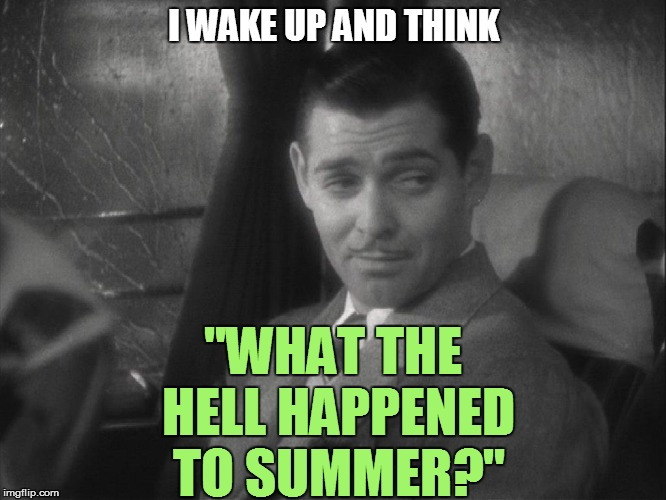 I WAKE UP AND THINK ''WHAT THE HELL HAPPENED TO SUMMER?"