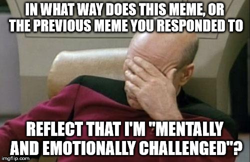 "Captain Picard Facepalm Meme | IN WHAT WAY DOES THIS MEME, OR THE PREVIOUS MEME YOU RESPONDED TO REFLECT THAT I'M ""MENTALLY AND EMOTIONALLY CHALLENGED""? 