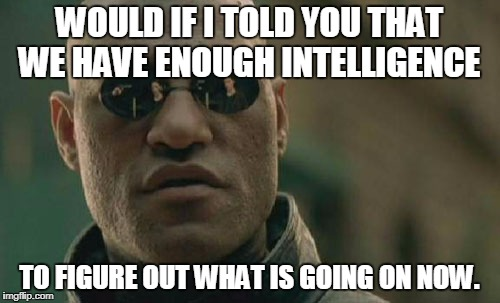 Matrix Morpheus Meme | WOULD IF I TOLD YOU THAT WE HAVE ENOUGH INTELLIGENCE TO FIGURE OUT WHAT IS GOING ON NOW. | image tagged in memes,matrix morpheus | made w/ Imgflip meme maker