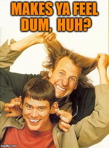 DUMB and dumber | MAKES YA FEEL DUM,  HUH? | image tagged in dumb and dumber | made w/ Imgflip meme maker
