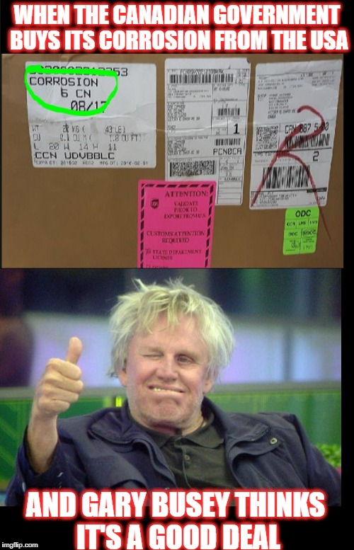 Defense Spending | WHEN THE CANADIAN GOVERNMENT BUYS ITS CORROSION FROM THE USA AND GARY BUSEY THINKS IT'S A GOOD DEAL | image tagged in gary busey 2,gary busey,canadians,gary busey wisdom,good buy | made w/ Imgflip meme maker