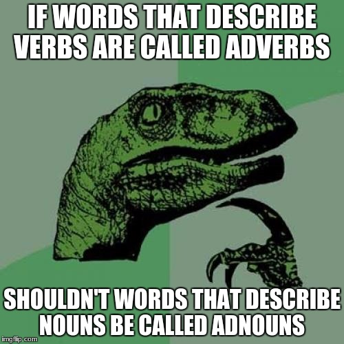 Philosoraptor Meme | IF WORDS THAT DESCRIBE VERBS ARE CALLED ADVERBS SHOULDN'T WORDS THAT DESCRIBE NOUNS BE CALLED ADNOUNS | image tagged in memes,philosoraptor | made w/ Imgflip meme maker