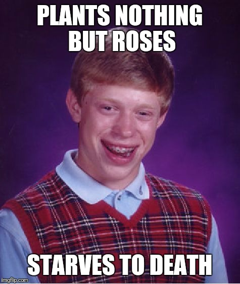 Bad Luck Brian Meme | PLANTS NOTHING BUT ROSES STARVES TO DEATH | image tagged in memes,bad luck brian | made w/ Imgflip meme maker